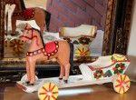 Petit cheval avec carriole