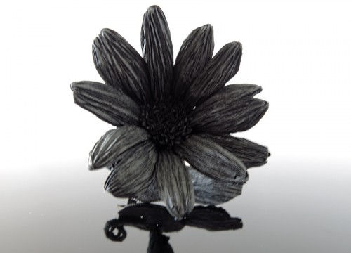 Daisy brooch - mono collection
